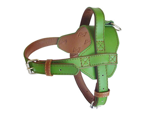 Fusion Lime Harness - Large