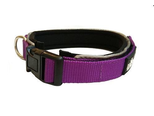 Purple Padded  Collar - Medium