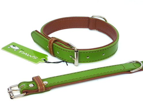 Fusion Lime Collar - Large