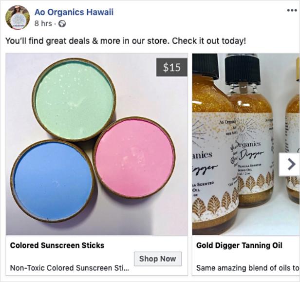 Ao Organics Hawaii Wix Facebook Ads