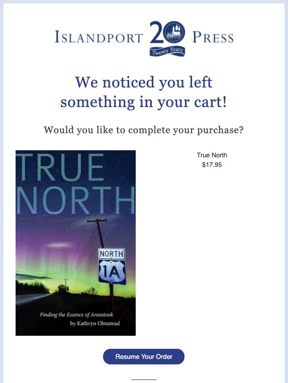 abandoned cart email example islandport press