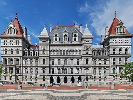 New York Attorney General Launches New Elder Fraud Prevention Initiative; Leitner Varughese Continue