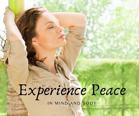 Expirience Peace.png