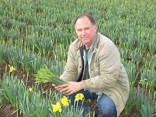 Demetri with daffodils