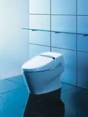Toto Neorest toilet with autoflush feature, heated seat