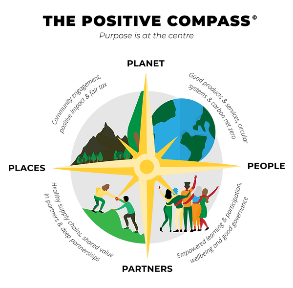 Illustration_Positive Compass_Draft5 (1)