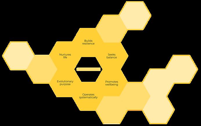 Illustration_Regenerative Beehive_Web_2.