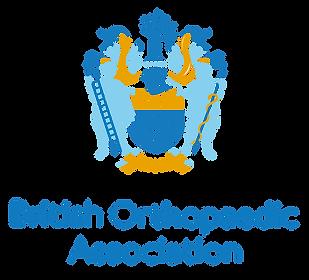 BOA Logo 2019.png
