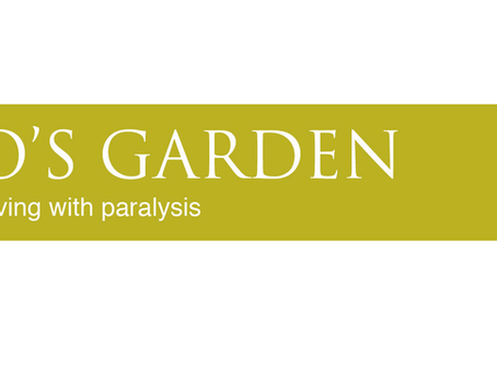 Charity Partner at BritSpine 2018 -  Horatio's Garden
