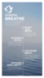 Breathe Peace Within Mindfulness for Veterinarians COVID-19 coronavirus