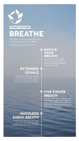 Infographic Breathe_Breathe Mobile.jpg