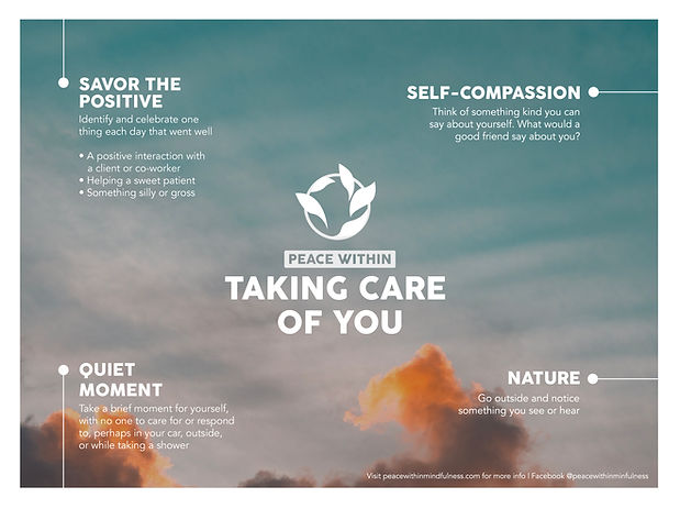 Taking Care of You Peace Within Mindfulness for Veterinarians COVID-19 coronavirus