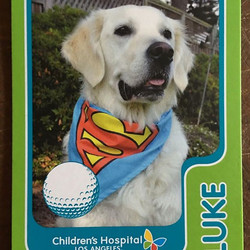 Here is Luke's player card for his therapy work - so proud of this guy!!!