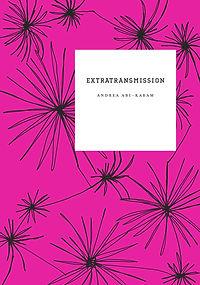 extratransmission.jpg