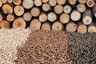 biomass-pellet-3.jpg
