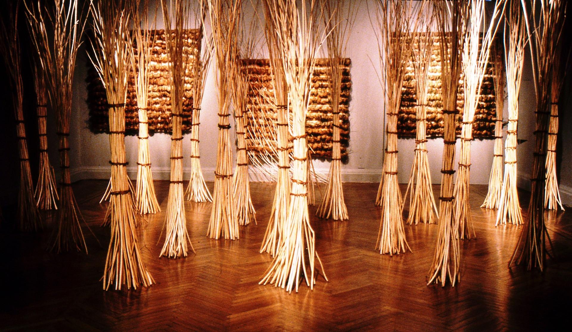 Ciclo vital. Expuesta en el Museo Nacional de Bellas Artes (1996) , Centro Cultural Mapocho (1997) y Trienal de Lödz, Polonia con Mención Honrosa (1998)