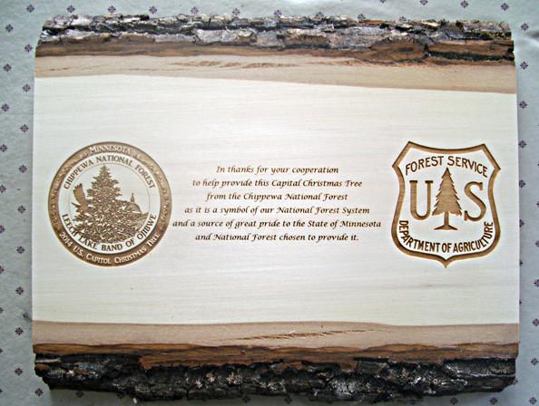 Forest Service Bark - .jpg