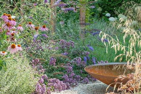 Mediterrane tuin-10.jpg