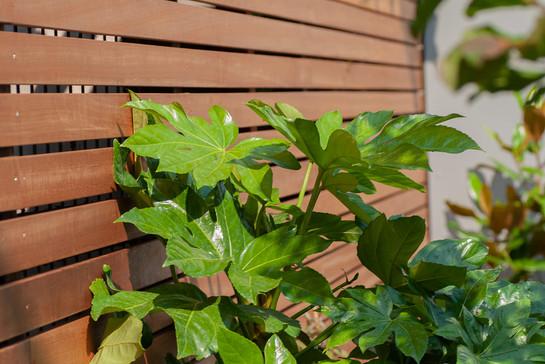 moderne-tuin-6.jpg