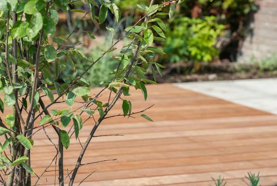 moderne-tuin-8.jpg