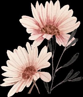 img-britt-deller-flower.png