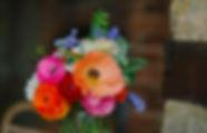 Brassica 164.jpg