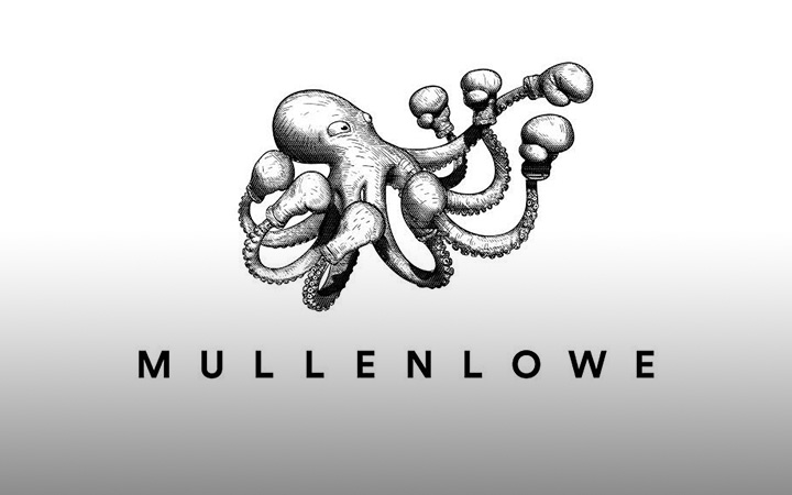 Mullenflow box