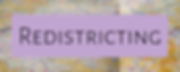 redistricting_speaker.png
