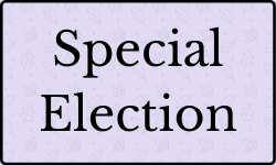 special_election.png