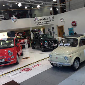 Sunny the Fiat 500 spends the day in Fiat Worcester showroom for launch of new Fiat 500.