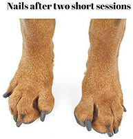 Nails after.jpg