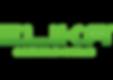 elika access systems company name