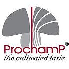 Prochamp шампиньоны