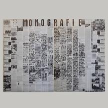 Zona Monografie