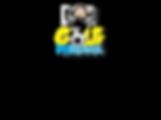 brazilian goals - logo e texto esp.png