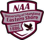 UMES NAA logo.jpeg