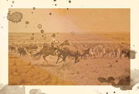 1864 - Place: Chisholm Trail