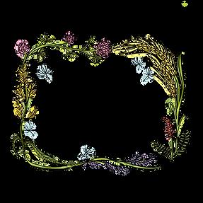 Meguma Meadows flowerfarm logo.png