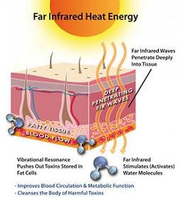 Infrared Heat On Fat Cells.jpg