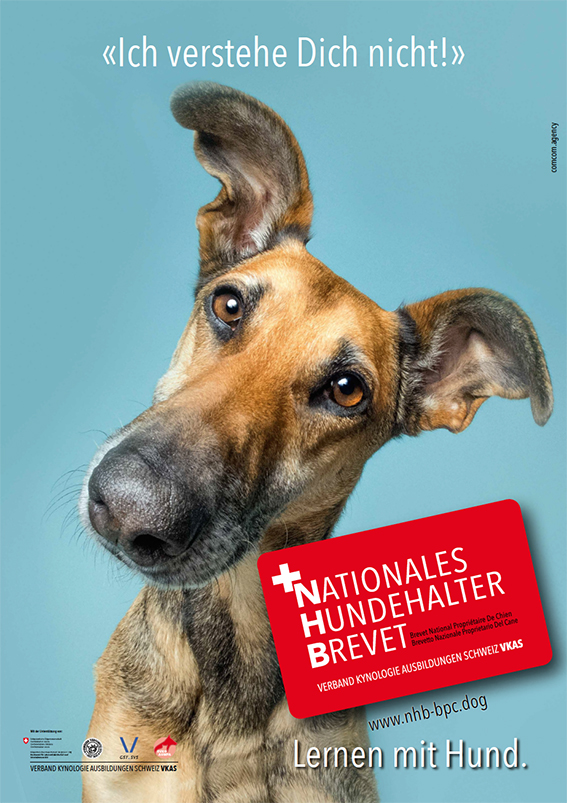 Nationales Hundehalter Brevet NHB ich verstehe dich nicht d
