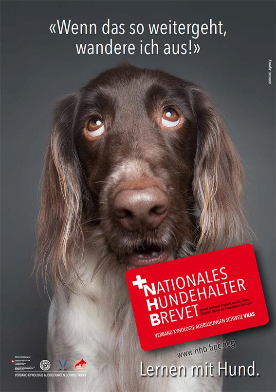 Nationales Hundehalter Brevet NHB wenn das so weiter geht d