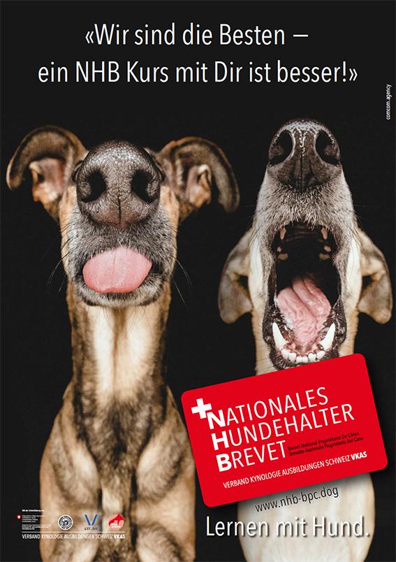 Nationales Hundehalter Brevet NHB wir sind die Besten d