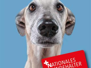 Nationales Hundhalter Brevet mit Plakaten für Sie zum download