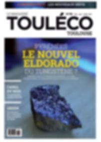 Article Lilibaord dans Touléco