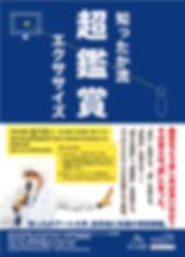 A4たて_表面_知ったかアート大学超鑑賞_ol.jpg