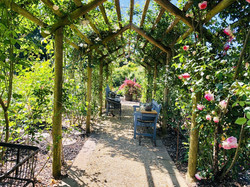 bright rose garden.jpg