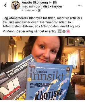 Anette Skonseng - 4 artikler.jpg