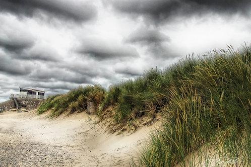 La dune 17