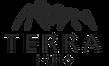 Terra Echo Logo.png