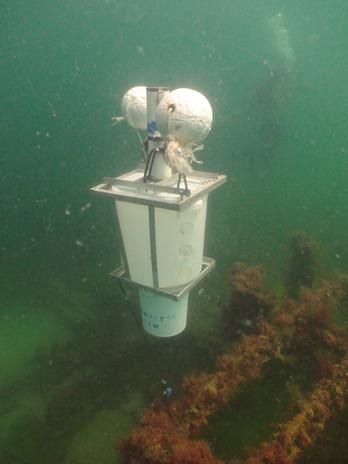 Deployed light trap underwater